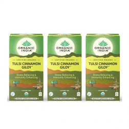 Organic India Tulsi Cinnamon Giloy Tea Bags