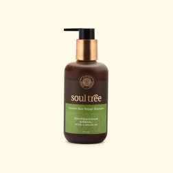 Soultree Licorice Hair Repair Shampoo