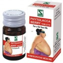 Dr. Willmar Schwabe Phytolacca Berry Tablets
